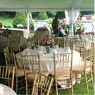 Weddings & Grand Events
